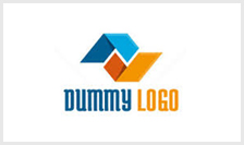 dumy-logo